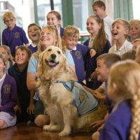 Too Exciting for Dogs… Megan Rix / Ruth Symes